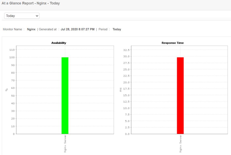 Nginx Application Monitoring - ManageEngine Applications Manager